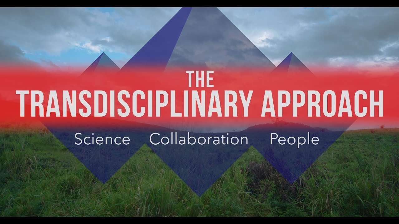 Preview image for Transdisciplinary Approach: Science. Collaboration. People. video