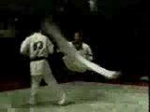Kyokushin karate fighting (wheelkick)