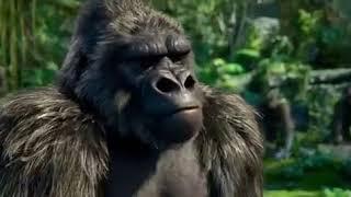 Download lagu Tarzan sub indo MP3