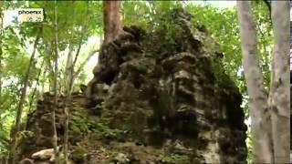 Sternenkriege der Maya - Deutsche Doku über die Maya Der Sternenkrieg der Maya