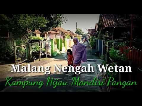 Ngintip Wanita Tani Malangnengah (video)