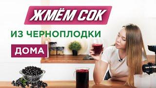 Заготовка сока из черноплодной рябины - как отжать чистый сок из ягод?