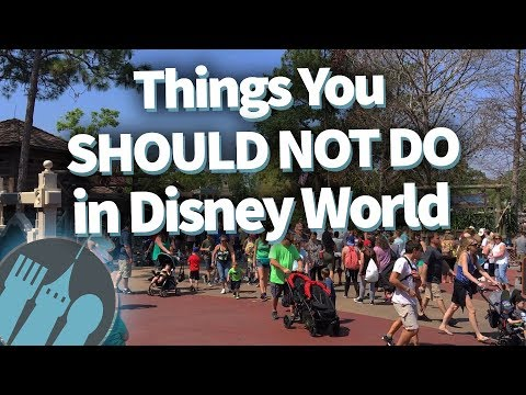 Things You SHOULD NOT DO in Disney World!