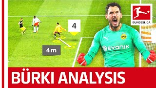 Roman Bürki - What Makes Dortmund