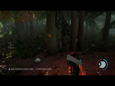 Demolition Expert Trophy/Achievement - The Forest