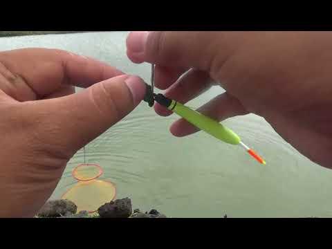 100% Ampuh PAKAI uMpan ini bikin ikan Pada NGUMPUL((MaNCiNG/FISHING))