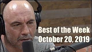 Best of the Week - October 20, 2019 - Joe Rogan Experience