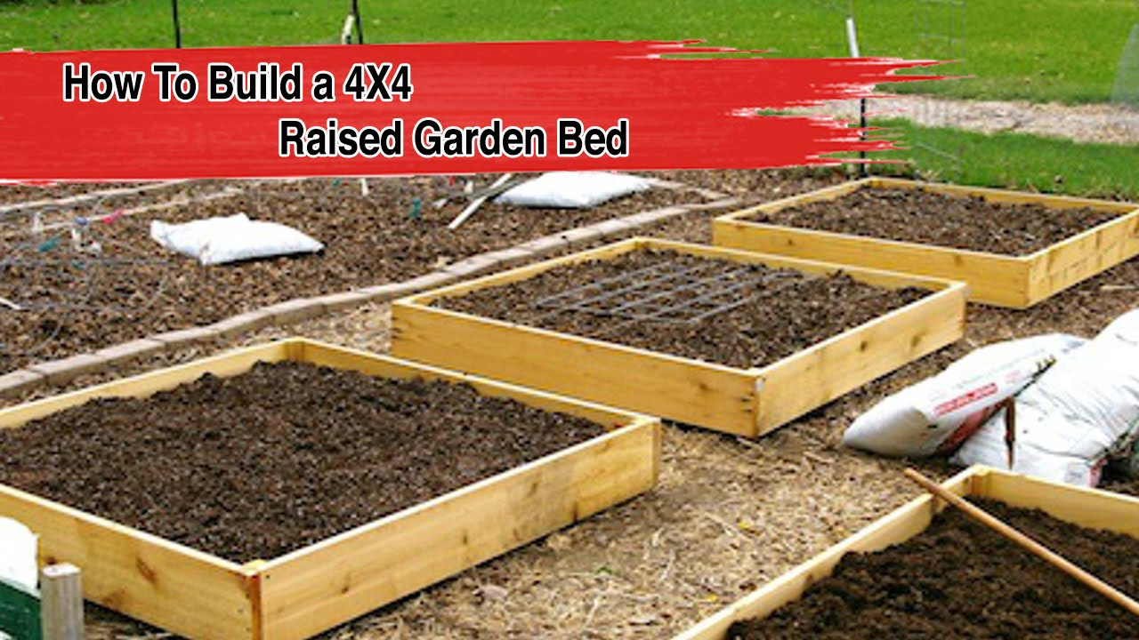 How To Build a 4X4 Raised Garden Bed - FOOD GARDENING - YouTube