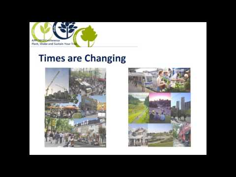 Calgary and Edmonton: Shake Your Tree, Emerging Planning Processes, Part 1
