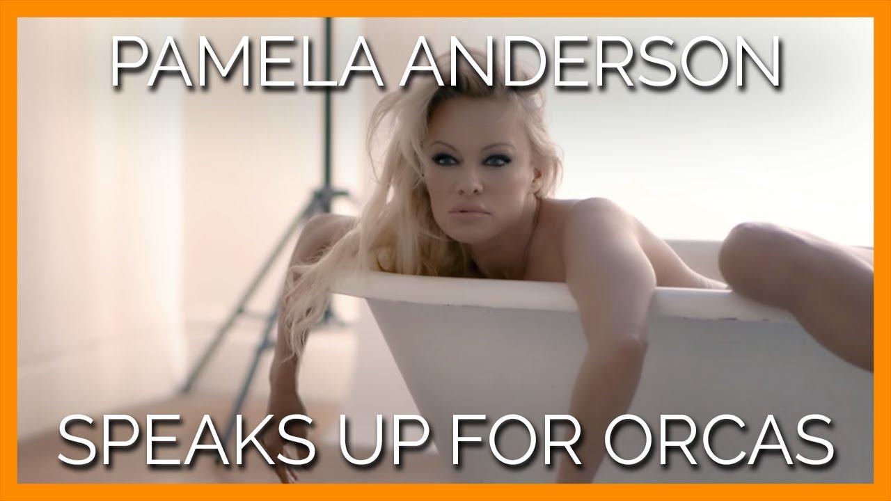 Anderson 2019 pamela Pamela Anderson