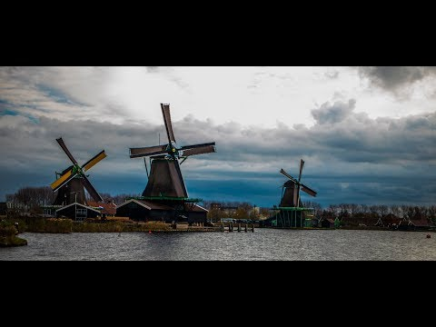 WEEKEND IN AMSTERDAM - ZHIYUN CRANE V2, CANON 80D, CANON 35MM MACRO