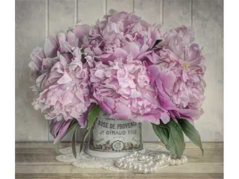 Peony Bouquet Vase Beautiful Pictures Romance Youtube