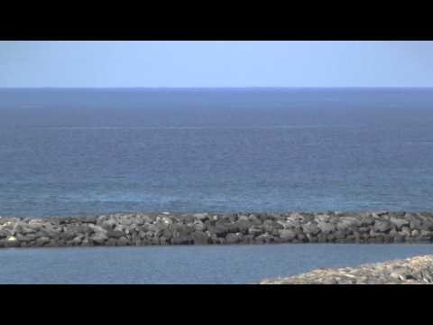 Humpback Whale Watch at Kawaihae, Hawaii
