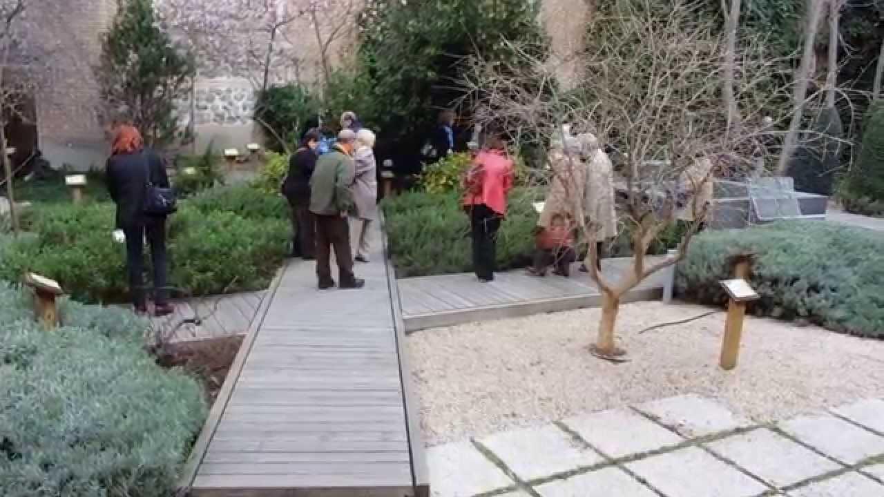 Visita jard n arqueobot nico en museo de san isidro for Jardines 6 san isidro