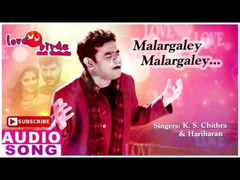Malargaley Full Song | Love Birds Tamil Movie Songs | Prabhu Deva | Nagma | AR Rahman | Music Master