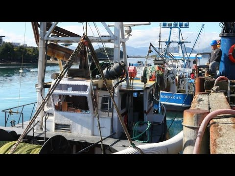 A Climate of Change: Ocean Acidification in Alaska