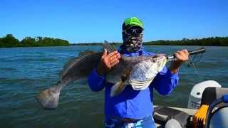 Arnhemland Barramundi Nature Lodge: Barra and Black Jew