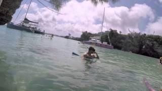 Catamaran Snorkeling in Bermuda
