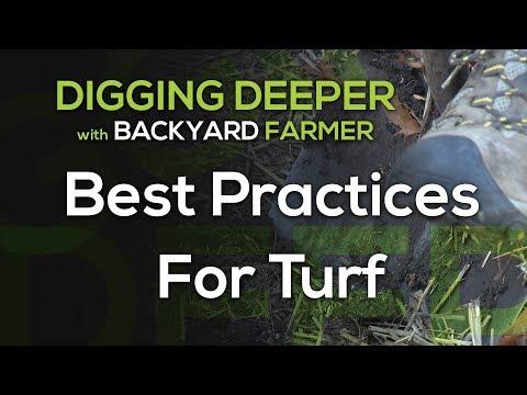 Digging Deeper Turf Best Practices