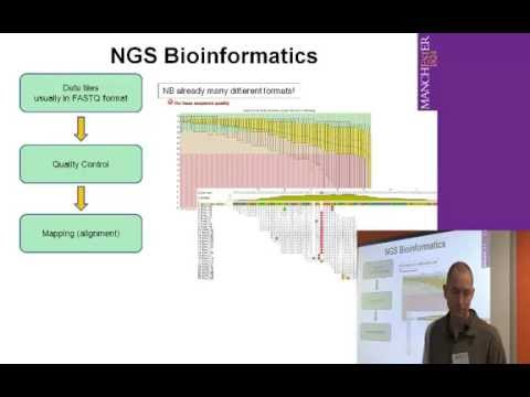 Introduction to NGS analysis - Part 2 (QC and mapping)