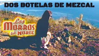 Watch Los Morros Del Norte La Botella video