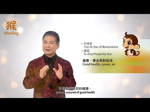 2019 Monkey Zodiac Forecast by Grand Master Tan Khoon Yong
