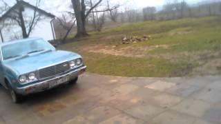mazda 929 HT 1978