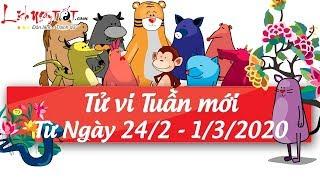 Xem tử vi hàng ngày - Tử vi tuần mới từ ngày 24 tháng 2 đến ngày 1 tháng 3 năm 2020 của 12 con giáp