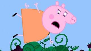 Peppa Pig Français 💚 Le Mûrier 💚  Dessin Animé