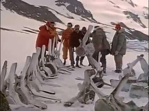 выбрать жак ив кусто в антарктиду сомнения