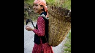 true himachali folk song-2