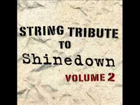 What A Shame- Shinedown String Tribute
