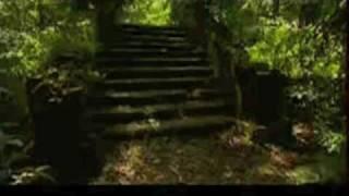 Amazonian Trip