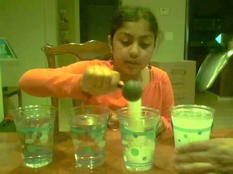 Salt Water Egg Experiment