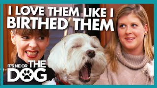 Reality Check For Dog 'Mother' Who Over Pampers Her Dogs | It's Me or The Dog