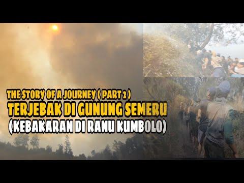 GAGAL MUNCAK KE GUNUNG SEMERU PART 2 | THE STORY OF A JOURNEY !! #6 #kuyngedakilur
