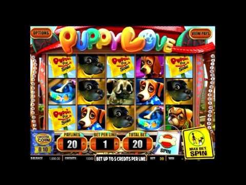 Видео гайд по игровому автомату Puppy Love Plus - бонусы, отзывы, характеристики