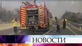 Израиль попросил Россию помочь в тушении лесных пожаров.
