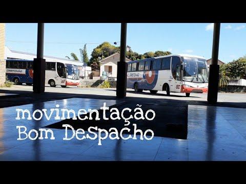 movimentação de ônibus