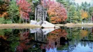 Enya - Willows of the water