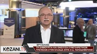 Ενίσχυση Συνεταιριστικών Τραπεζών στην Ελλάδα ζητά ο Δ. Παπαδημούλη