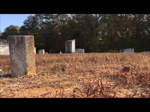 TDW 1597 - Lost Grave of Elvis Twin Brother