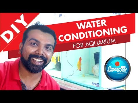 How To Do WATER CONDITIONING For Aquarium || Discus Fish