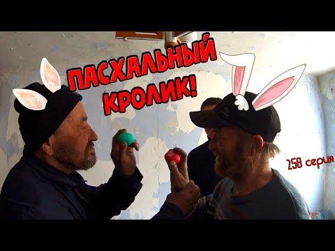 One day among homeless!/ Один день среди бомжей -  258 серия - ПАСХАЛЬНЫЙ КРОЛИК! (18+)