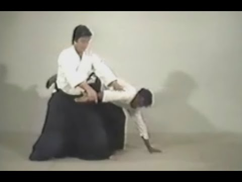 Akido - 08 - Shomenuchi Sankyo   Omote