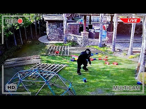Escape the Cage! Backyard Monster Caught on Camera Breaking Out of Trap!!!