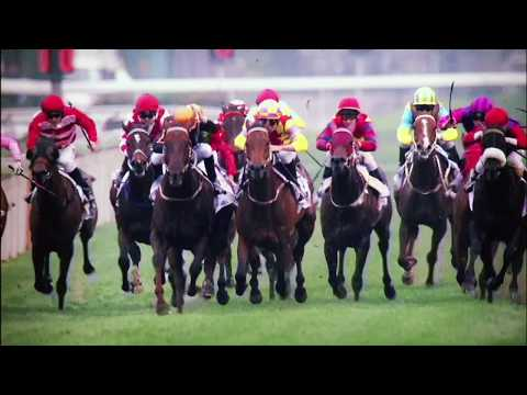 Horse Racing | 2017 Hong Kong Champions Mile on Trans World Sport