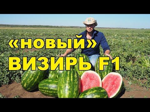Вопрос: Сколько и какие сорта арбузов существуют?
