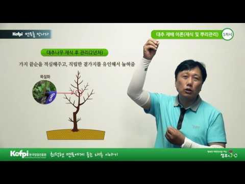 [한국임업진흥원] 대추재배 기초이론 (5차시)