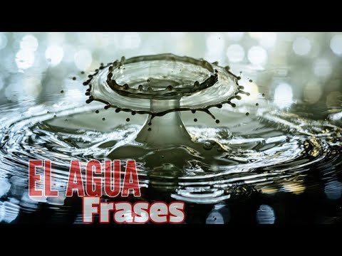 Frases Sobre El Agua Dia Mundial Del Agua Frases Alusivas